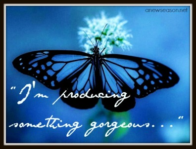 butterfly-blue-the-free_125891-2